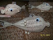 Ryby z pedigu